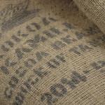 HEXX cacao beans from Kokoa Kamili in Tanzania