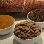 HEXX cacao beans - cacao nibs - organic coconut palm sugar