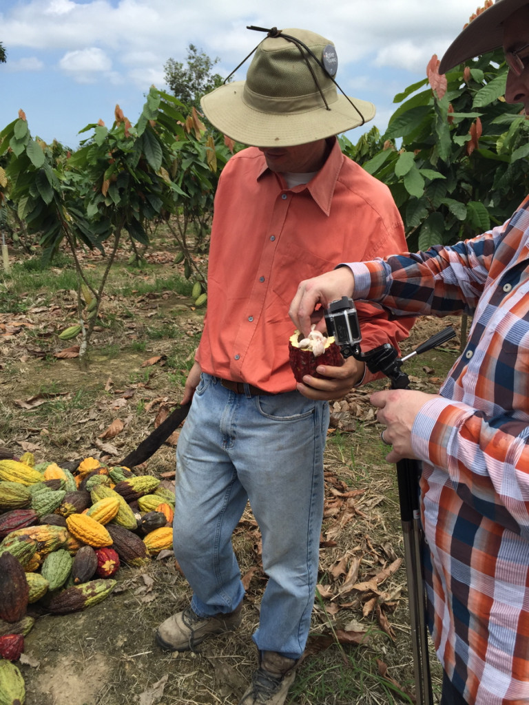 Hexx Chef Matt Silverman at Camino Verde farm in Ecuador