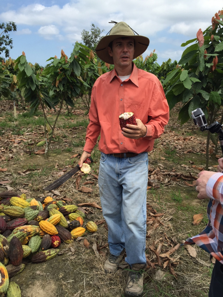 Vicente with cacao fruit